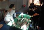 東京都・葛西臨海水族園で、貴重な深海生物を見る「深海ラボ」が開催