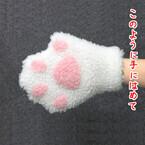 付けるとネコになれる手袋が話題に!