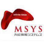 MSYS、3Dプリンタ用いた「メディカル3Dモデル造形サービス」を開始
