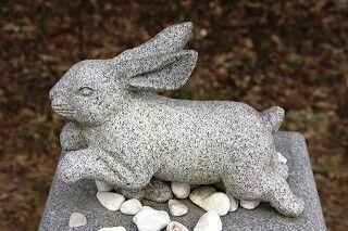 うさぎがいっぱい! 鳥取県にある縁結びの神様「白兎神社」に行ってきた