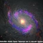 アルマ望遠鏡、4700万光年先のブラックホール周辺に有機分子を発見