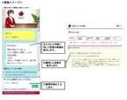損保ジャパン日本興亜サイトFAQに「バーチャルナビゲーションシステム」