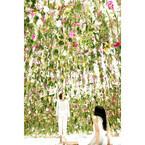 チームラボ新作は、無数の生花が浮遊する空間 - 日本科学未来館で公開