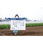 オイシックス、千葉の畑で入社式開催 - スーツ姿で収穫作業も