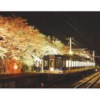 電車内で地ビール飲み放題! 2日限定で夜桜見物の特別電車「飲んでん」運行