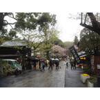 東京都・深大寺はそばのみならず! 懐かしささえ感じるぶらり散歩をしよう