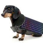 スマホで操作できる愛犬用のLEDベスト「Disco Dog」の開発資金を募集中