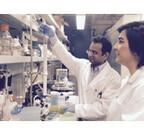 メープルシロップエキスに抗生物質の効果を高める可能性が示唆