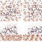 みずほ情報総研など、ナノバイオ界面での相互作用解析向け計算手法を開発