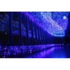 東京都・東京タワー展望台に満天の星が! 「天の川イルミネーション」実施