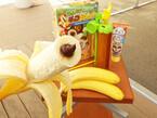 バナナの中にチョコ入りのチョコバナナが作れる「そんな! チョコバナ~ナ」