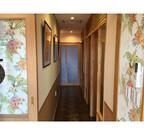 東京都荒川区に、完全個室の猫専用ホテルが誕生