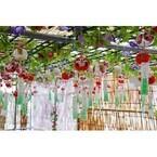 神奈川県で「第20回川崎大師風鈴市」開催! 全国の風鈴が一斉に響き渡る