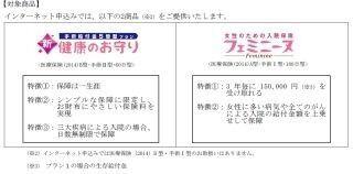 損保ジャパン日本興亜ひまわり生命、「新・健康のお守り」などネット申込開始