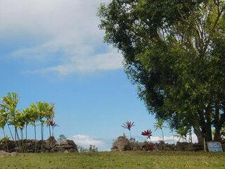 """優しさと愛情に包まれる - ハワイのパワースポット """"ククイプカ・ヘイアウ"""""""