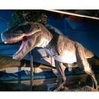 店内は恐竜だらけ! 太古レストラン・酒場「ダイナソー」神奈川・大和に誕生
