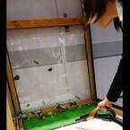 三菱、サイクロン式掃除機「風神」の新モデル - ゴミを「吹き飛ばす」掃除を提案