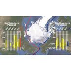 北極海の氷が観測史上4番目の小ささまで縮小