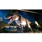 恐竜に乗って散歩も! 神奈川県大和市に恐竜レストラン「ダイナソー」登場