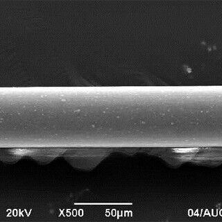 熊本大と東邦金属、線径0.05mmの耐熱マグネシウム合金製ワイヤを開発