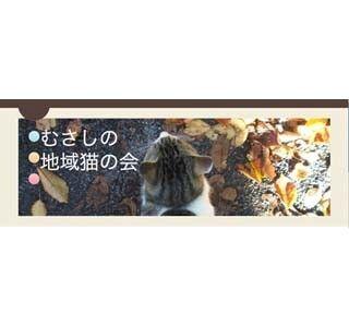 東京都・武蔵野市の保護団体が猫の一時預かりボランティアを募集中
