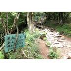 高尾山のみならず! 神奈川県・大山への日帰り登山は色んな意味でちょうどいい