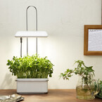 灯菜、壁掛けできる水耕栽培器「Akarina15」