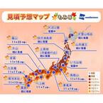 東京都23区は11月下旬から! 最新「紅葉見頃予想」 - 既に落葉のスポットも