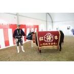 三重県で今年の女王を決める「松阪牛まつり」開催! 七輪の焼肉コーナーも