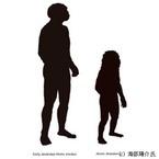 国立科学博物館、人類は進化の過程で劇的な小型化を経ていたことを確認