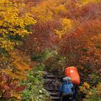 山ガールはどこに消えた? 高齢登山者の遭難増加! 1000万人が楽しむ登山の姿