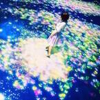 大阪府・ひらかたパークでチームラボのアート作品&デジタル遊具12種を体験