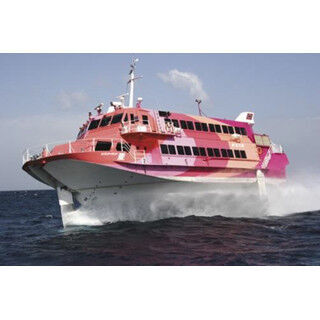東海汽船、12年ぶりに「大島椿まつり」の期間限定で稲取=大島を運航