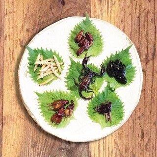 東京都・高田馬場で「昆虫食フェア」開催 - アリやサソリが食べられる!?