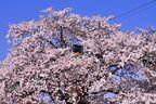 「第9回 タムロン鉄道風景コンテスト」、5月1日から作品募集開始