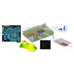 Mentor、SI/PI解析や3D電磁界ソルバなどを統合したPCBソリューションを発表