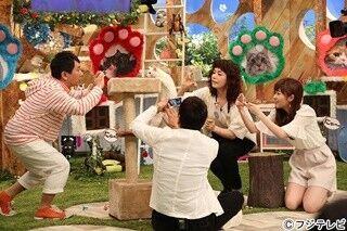 稲垣吾郎、猫好き番組でMCを担当「メンバーのリアクションが怖いですね」