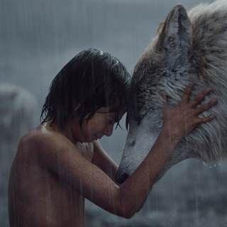 『ジャングル・ブック』動物も森もCG! 驚異の映像に迫るメイキング映像公開