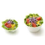 モスバーガー、レッドキャベツスプラウトを使用した新サラダ発売