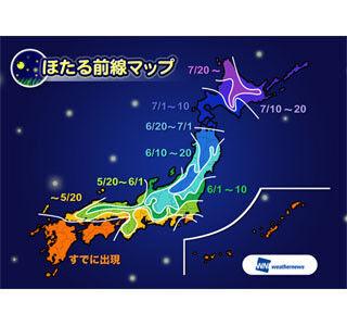 ほたるの出現、西~東日本は5月中旬~6月上旬、四国/九州はまもなくピーク?