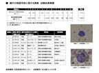 1月でも1平方メートル辺り744個の花粉が~網戸の残留花粉を調査