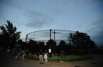 「真夏の夜の動物園」 20時まで開園-上野動物園