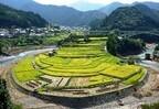 和歌山県の有田川町で名勝あらぎ島をめぐる「棚田ウォークinあらぎ島」開催