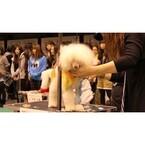 東日本大震災チャリティーイベント「トリミング・家庭犬訓練競技会」を開催