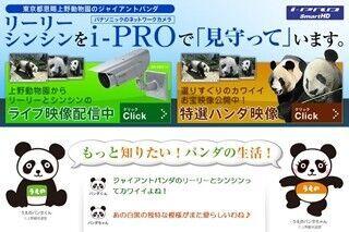 東京都・上野動物園 ジャイアントパンダのライブ映像配信開始