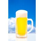 海鮮三崎港とすし三崎丸で、12/1から5日間、生ビール半額キャンペーン!