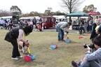 栃木県「ツインリンクもてぎ」で愛犬と遊べるイベント開催