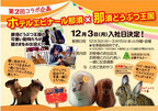 栃木県・ホテルエピナール那須に、本物のアルパカが臨時スタッフで入社!