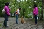 神奈川県横浜市「ハウスクエア横浜」で愛犬にマテをさせるイベントが開催