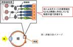 静岡県立大学とわかさ生活が視覚改善作用評価法を構築